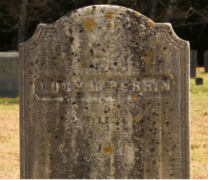 Grave of Lucy D. Perrin